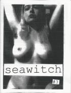 seawitch3
